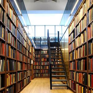 Библиотеки Поддорья